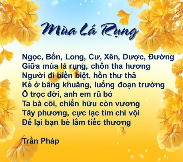 Mua la rung -TP