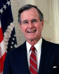 Bush 1